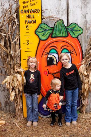PumpkinPatchHeight2