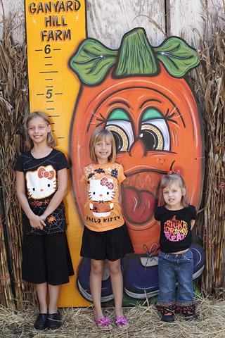 PumpkinTall2010-web