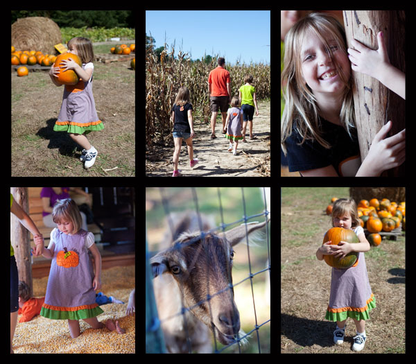 PumpkinPatch2-600