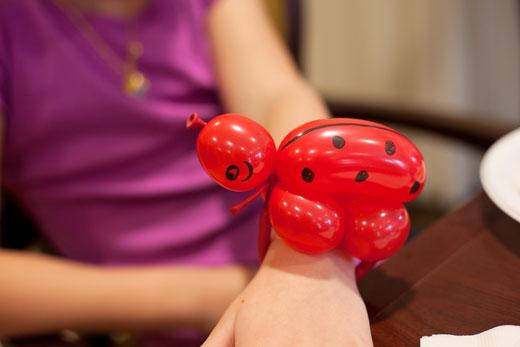 Ladybug-520