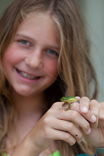 Frog1-400